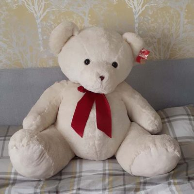 Xtra Large Cream Teddy