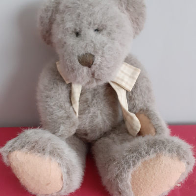 Soft Plush Ted