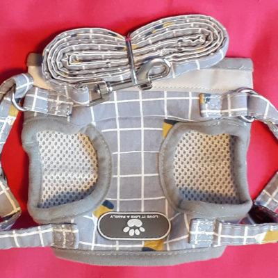 Love it like a family dog harnesses