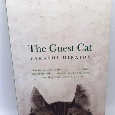 The Guest Cat book
