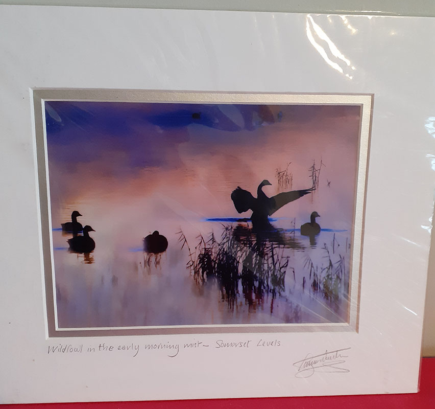 Lovely Mounted Photo