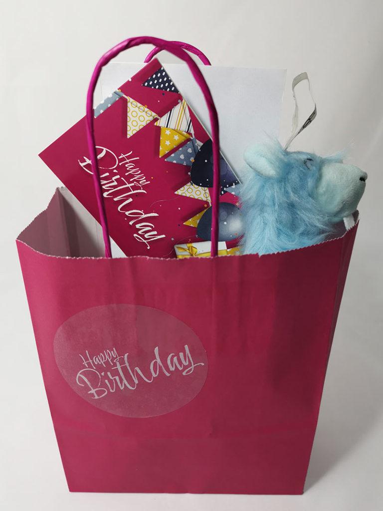 Birthday Gift Bag and Goodies